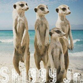 この画像は、このサイトの記事「Shiggy Jr. サマータイムラブ MP3 人気曲 動画まとめ」のイメージ写真画像として利用しています。